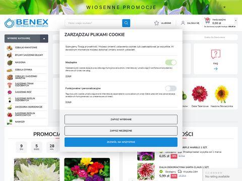 Cebule-kwiatowe.pl - sklep Benex
