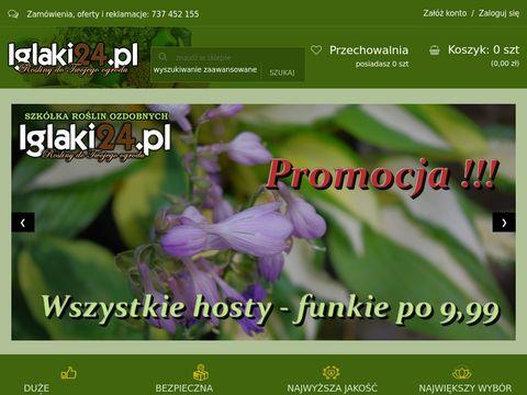 Iglaki24.pl - rośliny do ogrodu