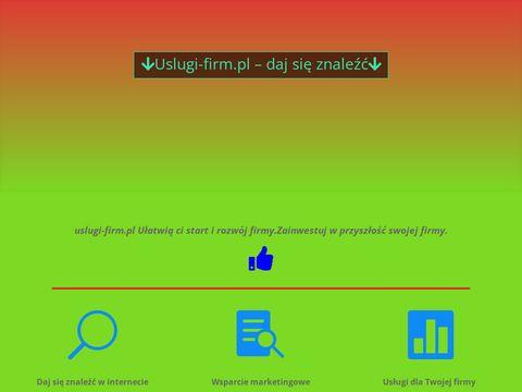 Reklama w internecie uslugi-firm.pl