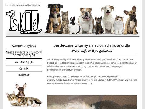 Hotel dla zwierząt w Bydgoszczy