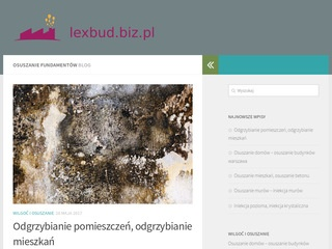 Osuszanie budynków - lexbud.biz.pl