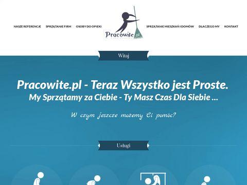 Tanie sprzątanie domów Warszawa